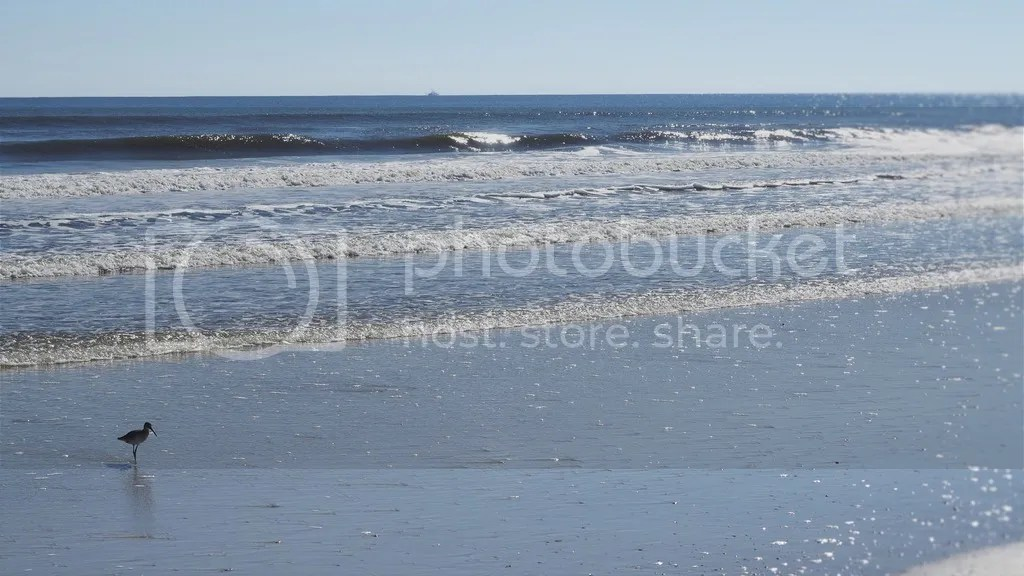 photo St_Augustine_Beach_zpslgi8hkwi.jpg