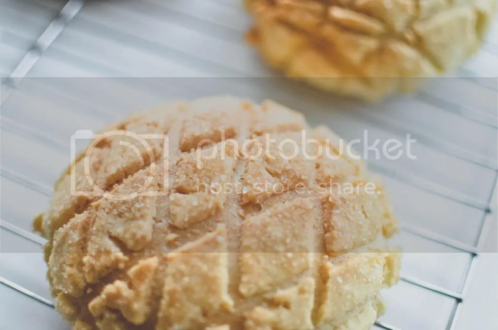 Baked Melonpan