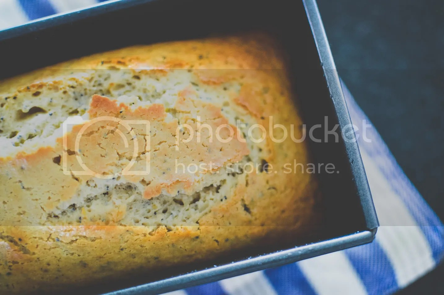 Spiced Orange and Poppy Seed Cake