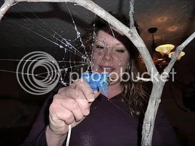 Glue Gun Web
