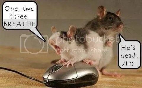 Mice and Mouse