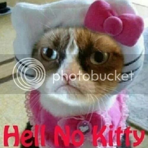 photo hell no kitty.jpg