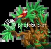 dragon city tropical dragon