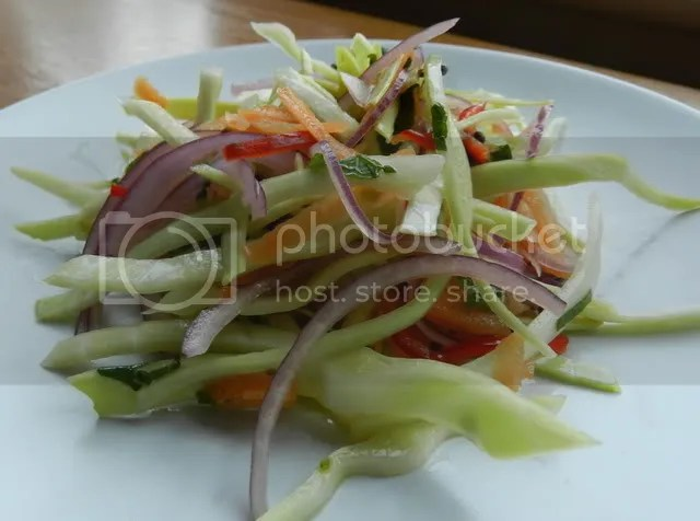 Indian coleslaw photo DSCN0643_zpse684bdbd.jpg