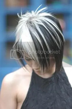 pictures of black hair with white silver highlights yahoo answers
