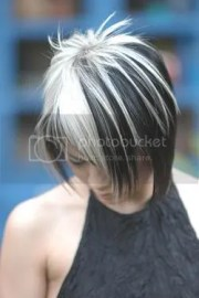 black hair with white silver