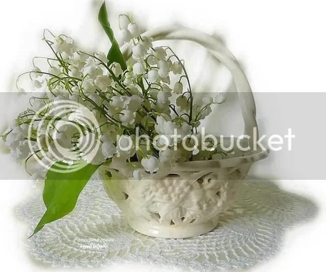 photo 150739_597440076937620_2007868861_n.jpg