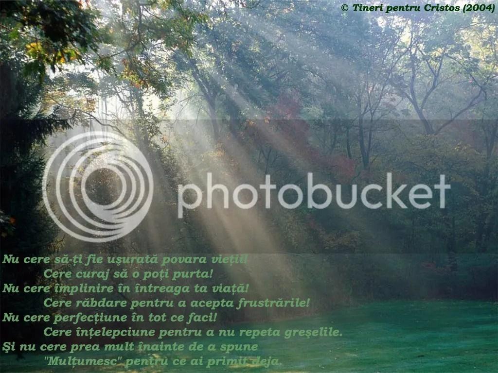 photo Sfat intelept 1_zpsrdn77bqt.jpg
