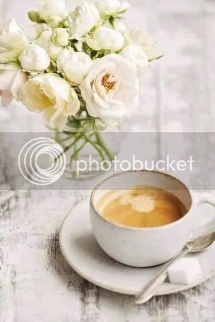 photo 12321364_954410714612899_1501338883060100903_n_zpsdpnm6nlf.jpg
