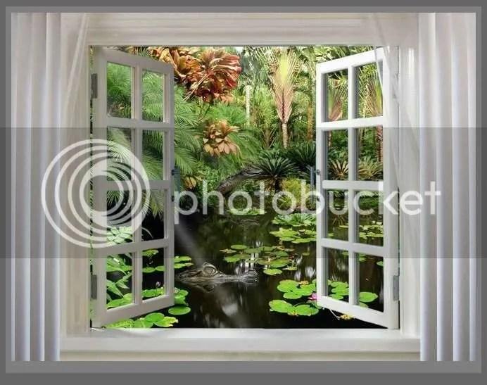 photo eu-sunt-o-fereastra-deschisa-pentru-zborul-viselor_897dc30ac11bff.jpg