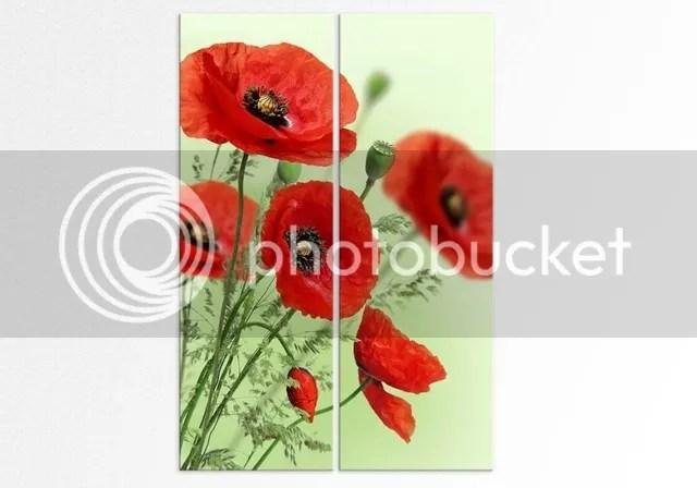 photo set tablouri verticale cu maci-1024x717.jpg