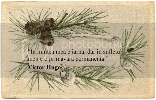 photo citate-despre-iarna-victor-hugo_a9b2a0e03b1a52_zpsvavji0ha.jpg