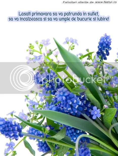 photo 1267396012-martisor-martie-014.jpg