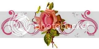 photo 177198802_13881302_20543845.jpg