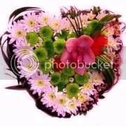photo 402685_344958028869135_200125716685701_1192534_660399417_a.jpg