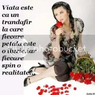 photo 533421_360827344034434_929107860_n.jpg