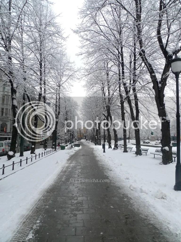 Snowy scenic view Oslo