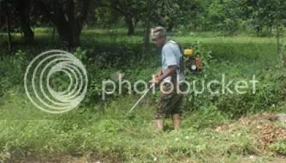 Lestarikan Budaya Gotong Royong, Masyarakat Dusun Sayuran Lakukan Kerja Bakti