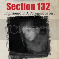 PIC VBT Showcase: Section 132 by Helga Zeiner