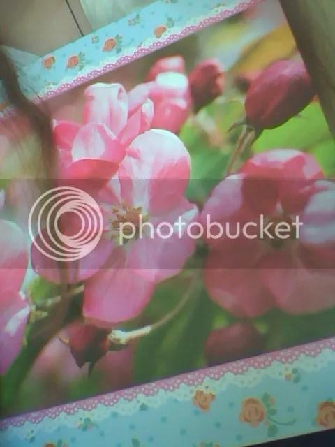 photo IMG_20140903_170207.jpg