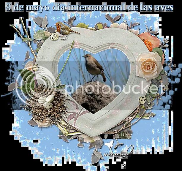 photo 9 de mayo dia internacional de las aves_zpstl1flejf.png