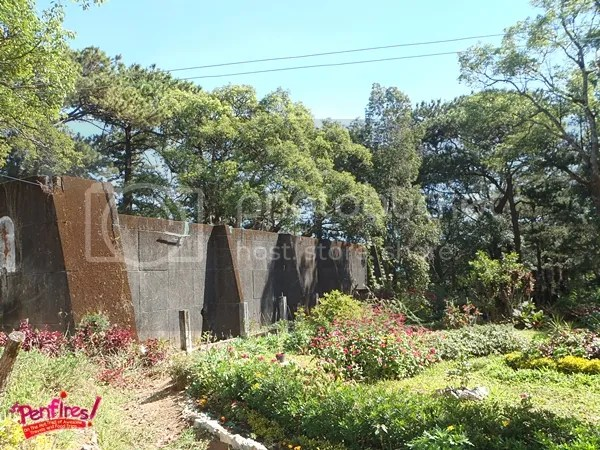 Garden in Diplomat Hotel Baguio