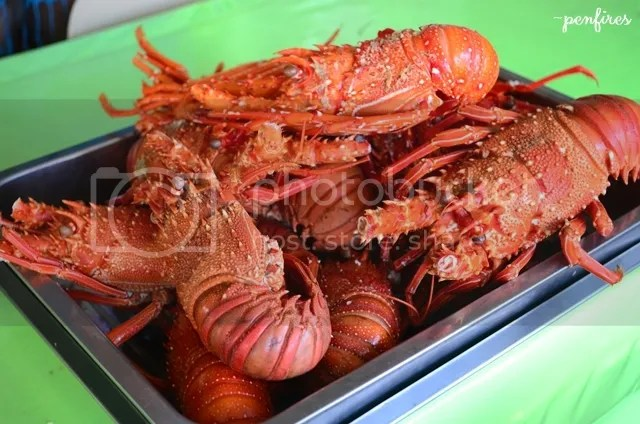Baler Lobster Seafood Restaurant