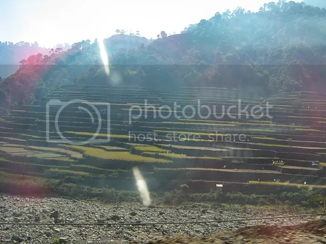 Rice terraces in Bontoc