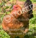 Backyard Farming Connection Hop