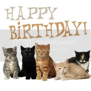 photo Happy_Birthday_Cats_zpse2e96cc1.jpg