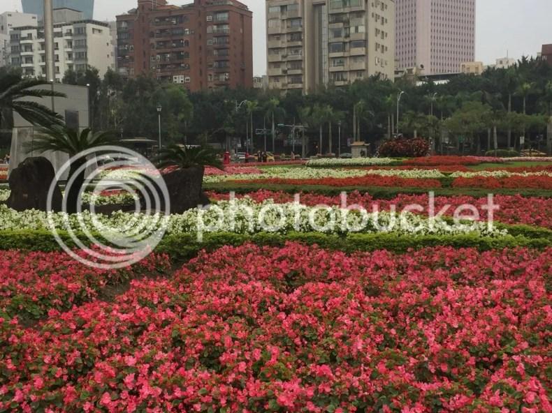 photo 0DB10E4A-B368-4FFB-97FF-6D842A831DD7.jpg