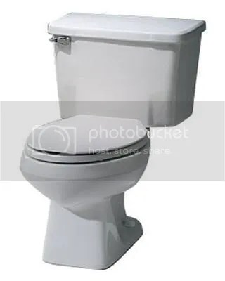 clogged toilet flood