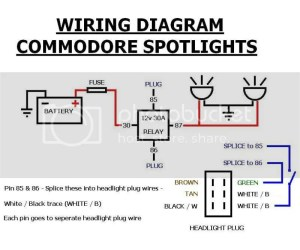 HELP needed for fog light wiring!!! VT EXEC | Just Commodores