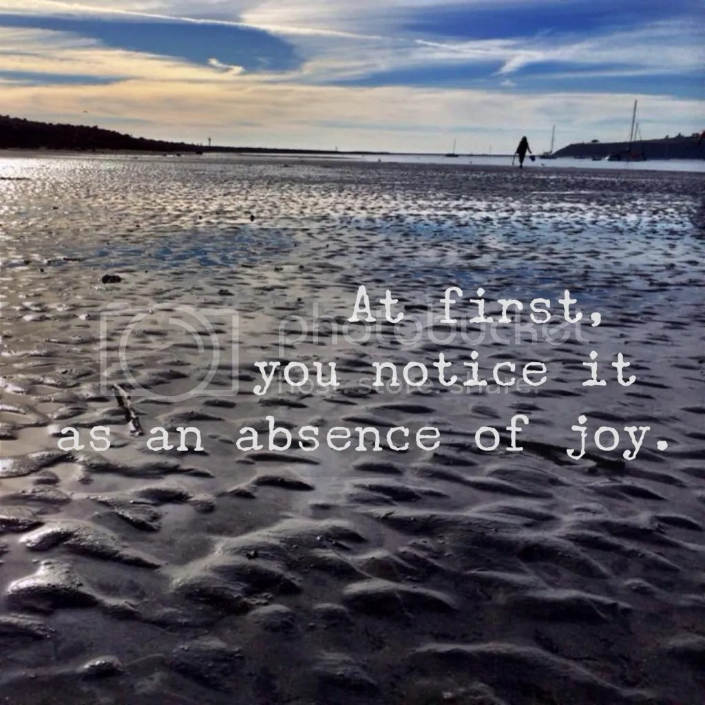 Depression quote: At first you notice it as an absence of joy. Half Moon Bay.