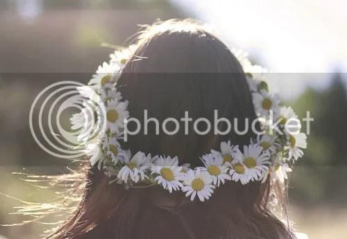 photo 44181-Daisy-Flower-Crown.jpg