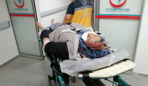 Aksaray'da freni boşalan araba şarampole devrildi: 6 yaralı 1