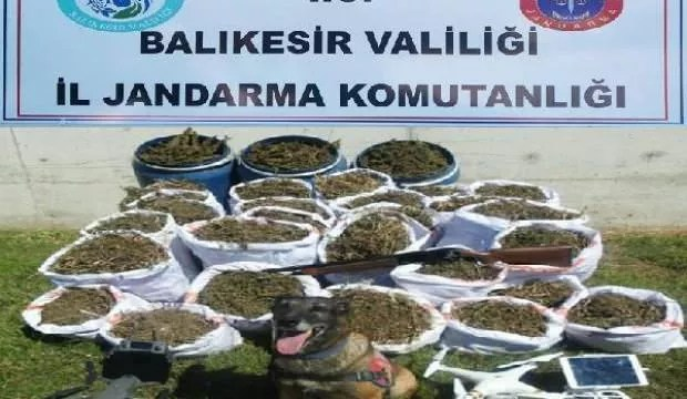 Balıkesir'de jandarma 318 kilogram esrar yakaladı 1