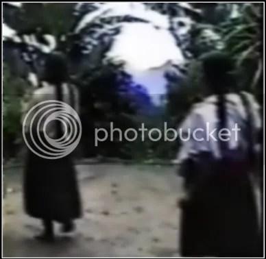 indigena posol