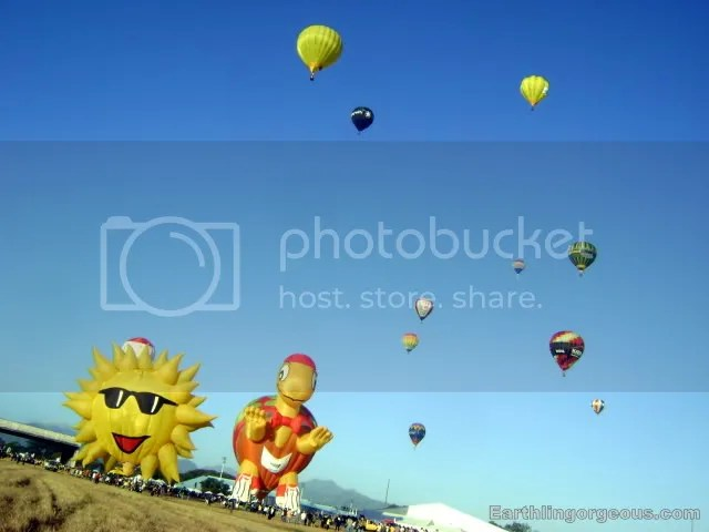 Sun and Turtle Hot Air Baloon