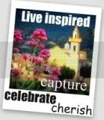 capture, celebrate, cherish