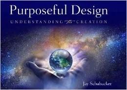 Purposeful Design Review