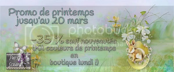 photo promoprintemps_zpsevk5dayv.jpg