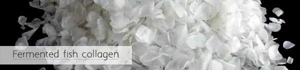 photo somang-cc-cream-ingredient-Fermented-fish-collagen_zpsbb10a84d.jpg