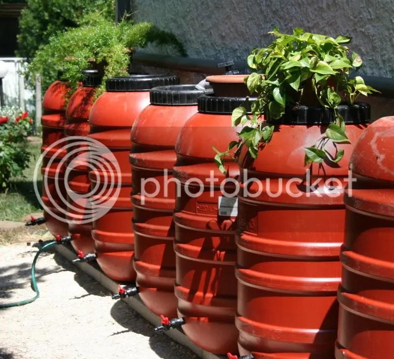 Forum Giardinaggio Irrigazione