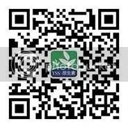 photo mp.weixin.qq.com_06f8_640wx_fmtjpeg_zpsk7kjgqvf.jpeg