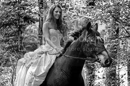 https://i0.wp.com/i1226.photobucket.com/albums/ee408/RowenaFW/horse.jpg