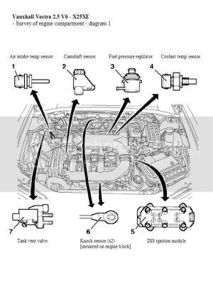 Vectra V6 X25XE Engine Compartment Diagrams | Vauxhall