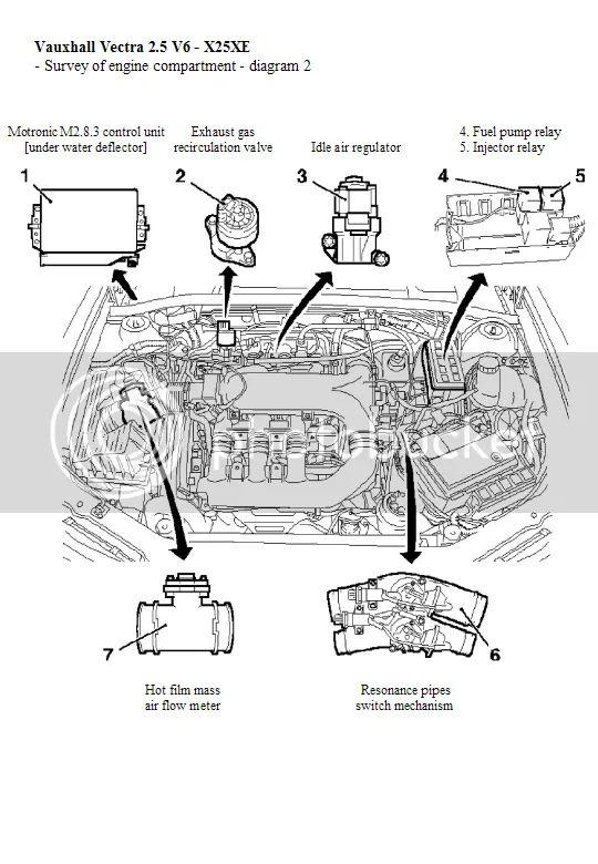 vectra 25 engine diagrams vectra sport