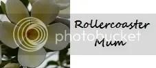 Rollercoaster Mum