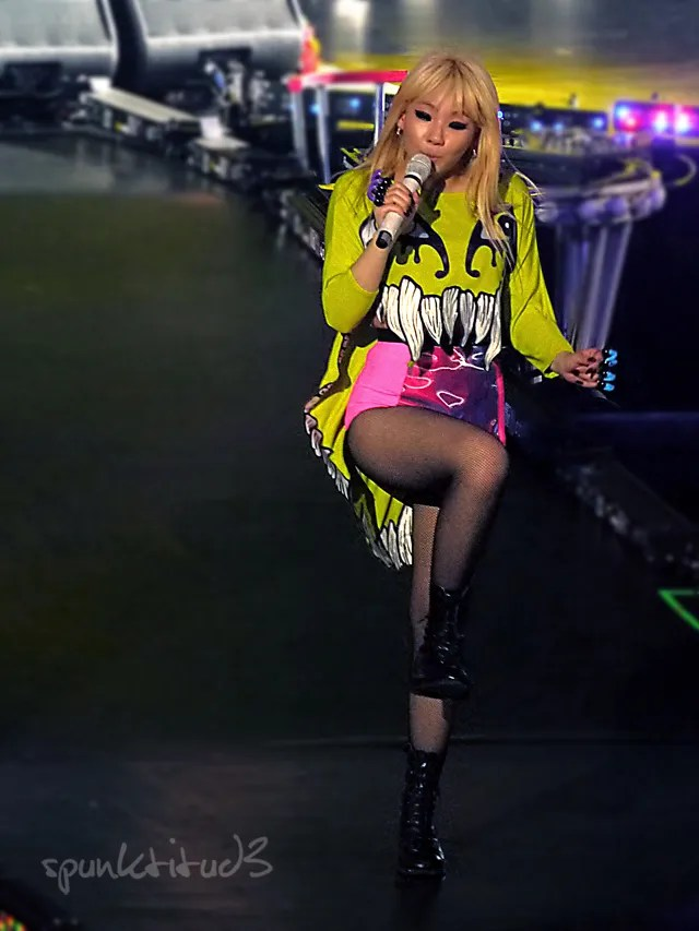 2NE1 New Evolution Global Tour